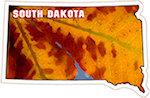 State of South Dakota Magnets